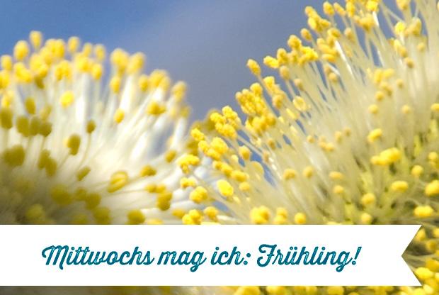 _w_MMI_Fruehling_05