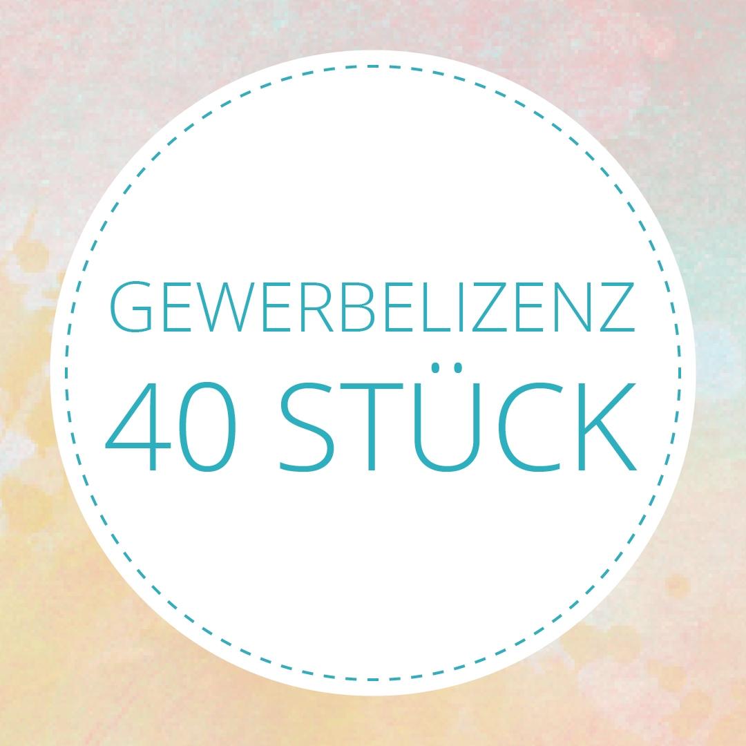 Gewerbelizenz_40